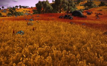 Multicolored Grass Restored