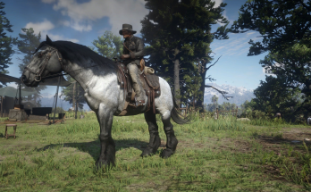 Chapter 2 Save File with Pre-Order Horse and Special Edition Horse