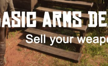 Selling Guns