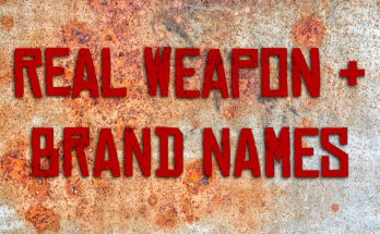 Real Weapon and Brand Names