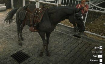 Online Turkoman Horses