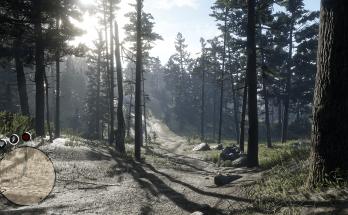 RDR2 - Advanced Game Settings